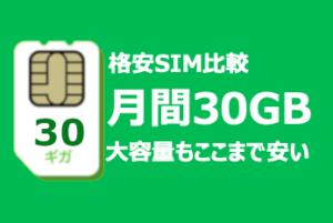 中国でも大容量SIM30G・もちろんVPN機能付き