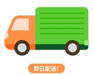 中国どこでもWiFiホームプラン・即日配送